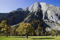 landscape mountain and maple trees, tyrol, austria - stock photo
