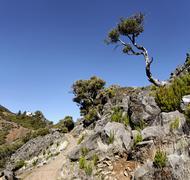 Casa do abrigo is the only mountain hut on madeira, pico ruivo, madeira, port Stock Photos