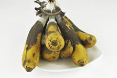 Rotten banana with fungus on white background Stock Photos