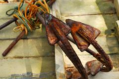 rusty anchor - stock photo