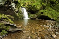 waterfall in the lotenbachklamm gorge, a branch of wutachschlucht gorge, sout - stock photo