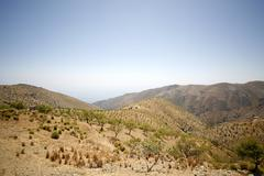 Stock Photo of foothills of the sierra nevada, andalucia, southern spain, europe