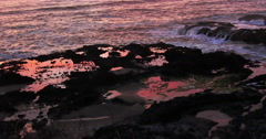 Oregon Coast Tide Pools Stock Footage