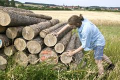 Farmer examining stacked logs Stock Photos
