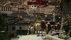 Horse convoy arriving at the remote Nepalese village of Marpha, Nepal Stock Footage