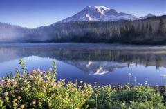Stock Photo of mount rainier and mirror lake, washington, usa