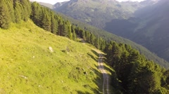 Following a Mountain Path - Aerial Flight Stock Footage