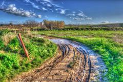 muddy road - stock photo