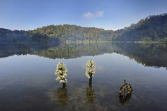 laguna chicabal, a lake sacred to the mayan people, guatemala, central americ - stock photo