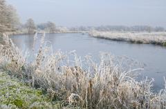 Hoar or white frost, backwaters of the ems river, emsland, germany, europe Stock Photos