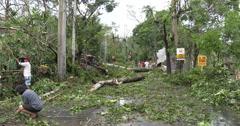 4K / HD Hurricane Aftermath Trees Block Road - stock footage