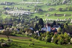 Stock Photo of Townscape during the cherry blossom season Obereggenen Markgraflerland Black