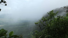 Misty forest fog blowing over mountain and forest Stock Footage