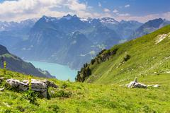 View of Lake Lucerne seen from Fronalpstock mountain Stoos Morschach canton of - stock photo