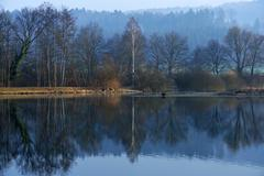 Morning mood in the Naturschutzgebiet Flachsee nature reserve in Rottenschwil - stock photo