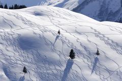 Ski tracks in deep snow Unterdamulser Alpe mountain pasture Damuls Bregenz Stock Photos