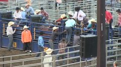 Rodeo bull riding child 1 slowmotion Stock Footage