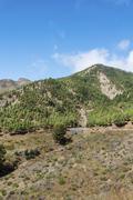 Road bridge Santiago del Teide Tenerife Canary Islands Spain Europe - stock photo