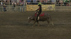 Rodeo -cowgirl on a water buffalo kneeling Stock Footage