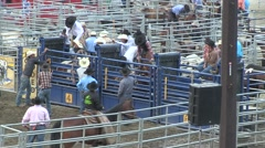 Rodeo bronco 5 cowboy wounded Stock Footage