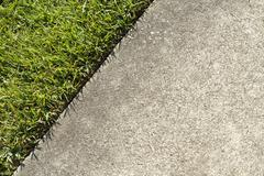 Green Grass Lawn And A Concrete Sidewalk Edge Meet - stock photo