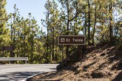 Stock Photo of Road to Pico del Teide pine forest Parque Nacional de las Canadas del Teide
