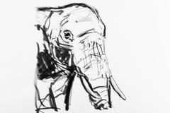 Stock Illustration of elephant, drawing, artist, gerhard kraus, kriftel