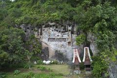 rock tombs and gallery of ancestors of the toraja in lemo, near rantepao, sul - stock photo