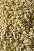 orecchiette, typical apulian handmade fresh pasta, apulia, south of italy - stock photo
