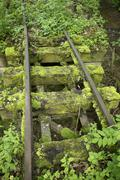 Old narrow-gauge railway tracks overgrown with moss and plants Stock Photos