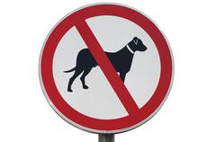 no dogs allowed, sign - stock photo