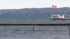 Hot windy summer day by the lake with boats and wind surfers in Barrie Ontario - stock footage