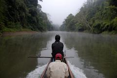 Solitary wooden boat floating upstream on the nam ou river, mist and jungle o Stock Photos