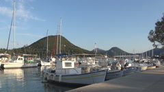 Local fishing boats anchored in a Mediterranean port. - stock footage