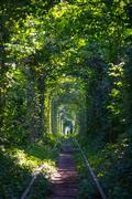 Tunnel of love Stock Photos