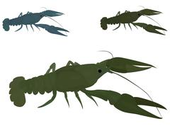 Green crayfish Stock Illustration