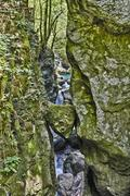 Stock Photo of Bears Head Tolmin Gorge Emerald Route Triglav National Park Tolmin Goriska