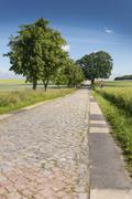 Country road with cobblestones near Teterow Mecklenburg Western Pomerania Kuvituskuvat