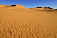 sanddunes at erg takaraft, immidir or mouydir, wilaya tamanrasset, algeria, s - stock photo
