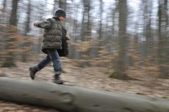 Boy 7 years running over a tree trunk in a forest Thuringia Germany Europe Stock Photos