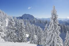Hoher Straussberg Mountain seen from Tegel Mountain Tegelberg Ammergauer Alpen - stock photo