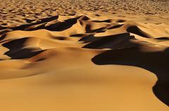 morning light on sanddunes at erg tihoulahoun, immidir, algeria, sahara, nort - stock photo