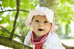 Baby 4 5 months old on a branch Germany Europe - stock photo