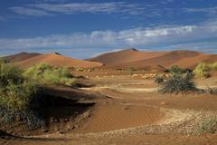 Desert landscape Namib Hardap Region Namibia Africa Stock Photos