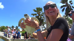Attractive blonde female holding small sea turtle Stock Footage