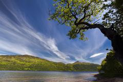 Loch Lomond Argyll and Bute Scotland United Kingdom Europe - stock photo