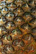 Pineapple Ananas comosus skin detail - stock photo
