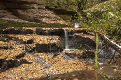 Monbach stream in autumn Monbachtal Nature Reserve Bad Liebenzell Northern - stock photo