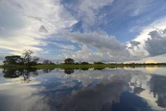 Evening at a widened part of the Amazon or Rio Solimoes Mamiraua Sustainable Stock Photos