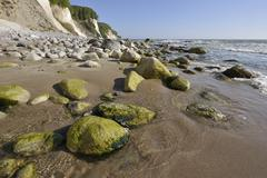 Coastal cliffs shingle beach and chalk cliffs UNESCO World Natural Heritage - stock photo